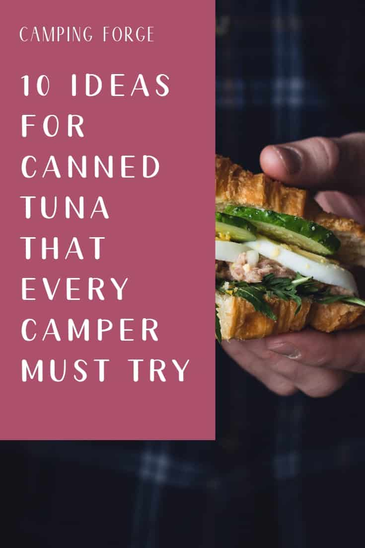 Pinterest image for 10 Ideas For Canned Tuna That Every Camper Must Try