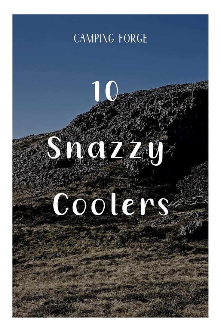 Pinterest image for 10 Snazzy Coolers