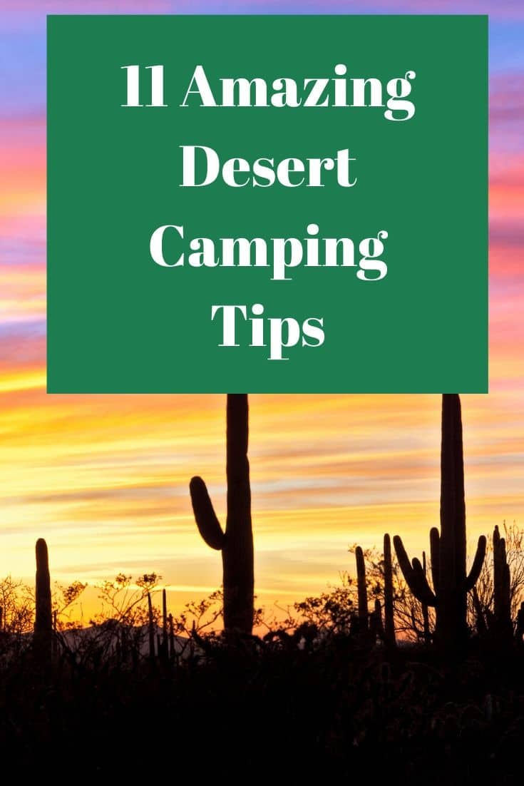 Pinterest image for 11 Amazing Desert Camping Tips