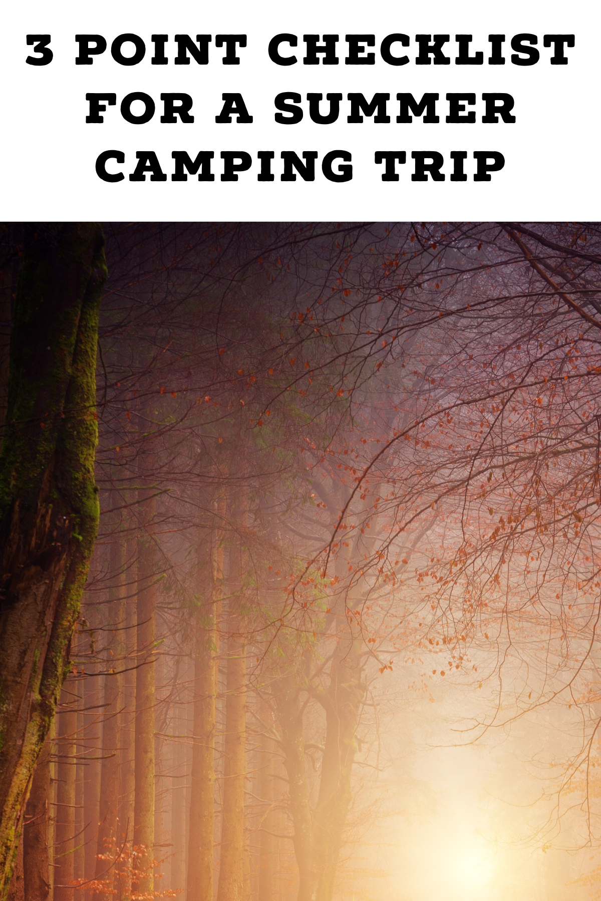 Pinterest image for 3 Point Checklist For A Summer Camping Trip