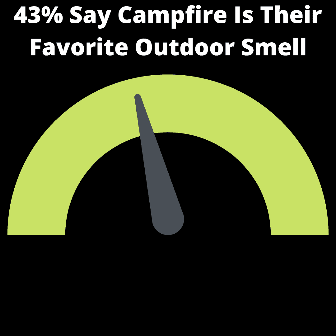 43% Say Campfire Is Their Favorite Outdoor Smell infographic