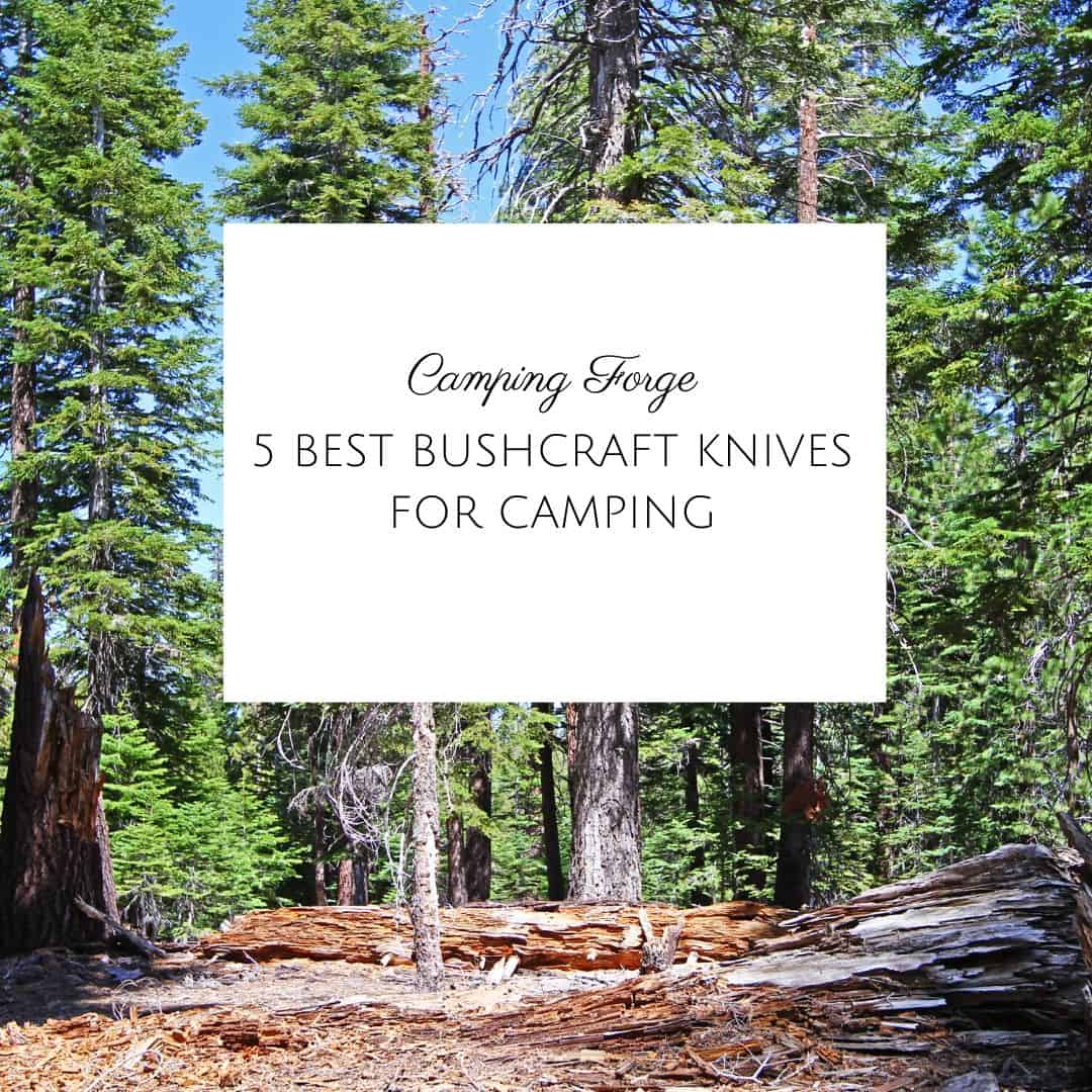 5 Best Bushcraft Knives For Camping