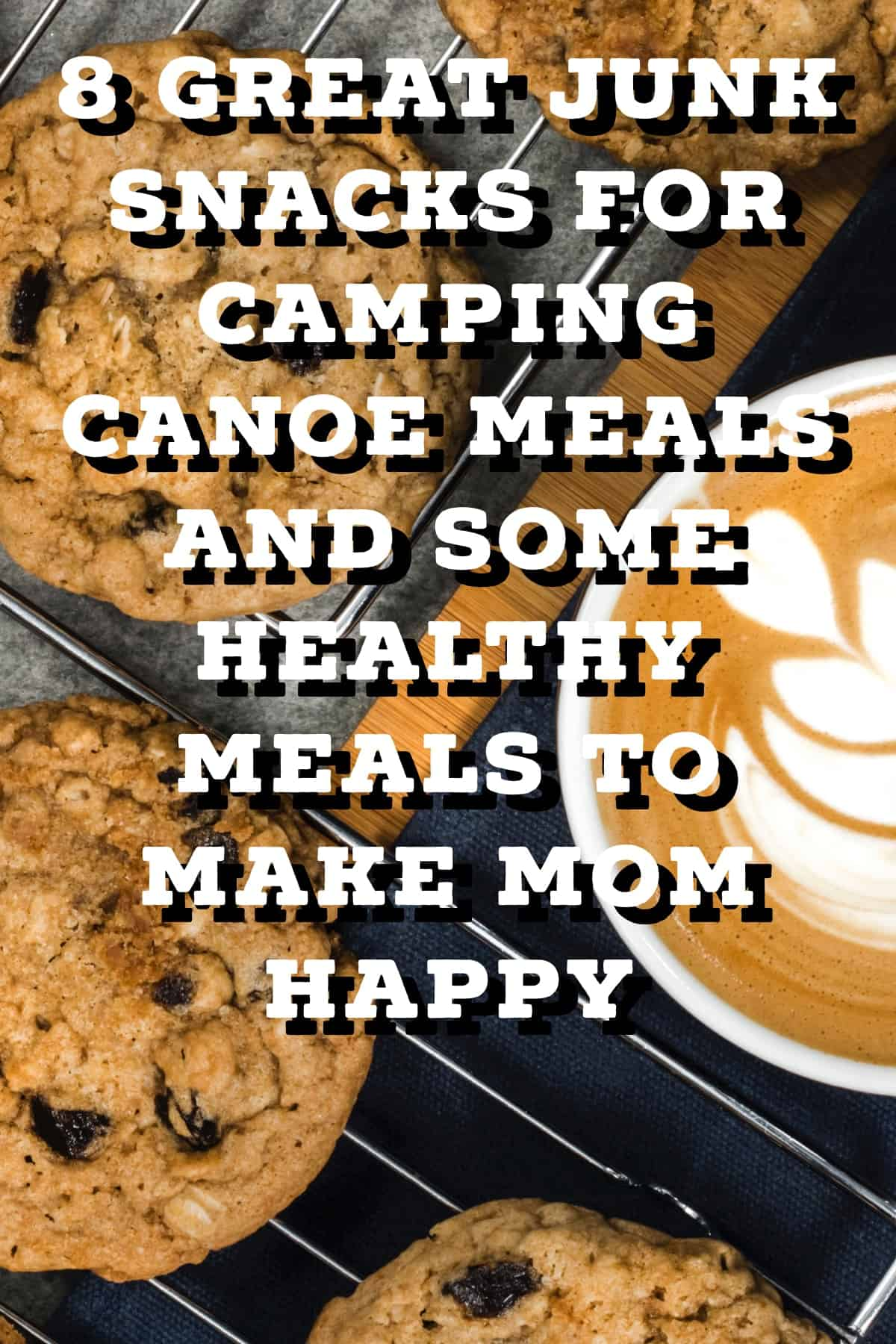 Pinterest image for 8 Great Junk Snacks For Camping Canoe Meals And Some Healthy Meals To Make Mom Happy