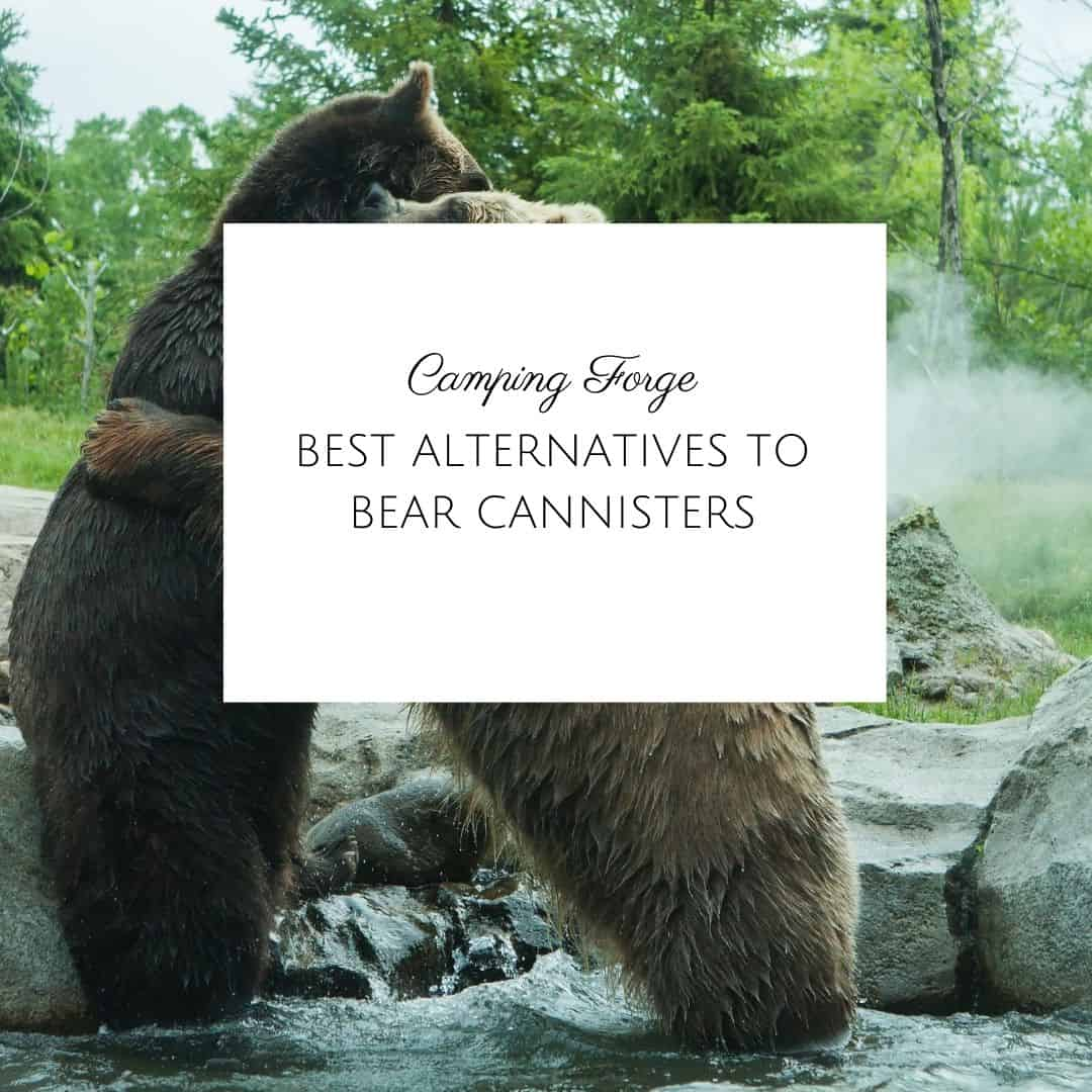 Best Alternatives To Bear Cannisters