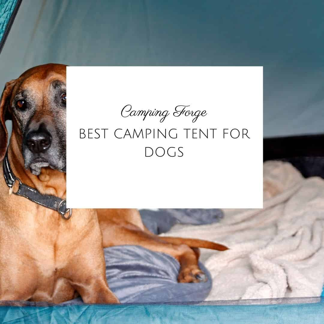 Best Camping Tent For Dogs