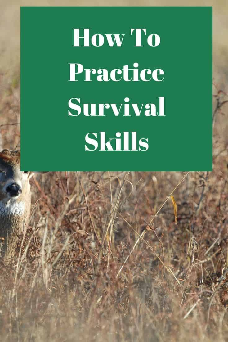 Pinterest image for How To Practice Survival Skills