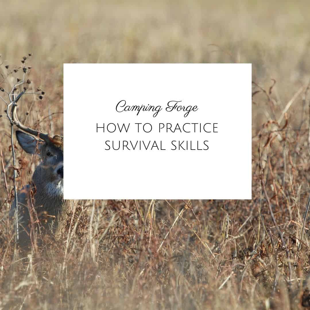 How To Practice Survival Skills