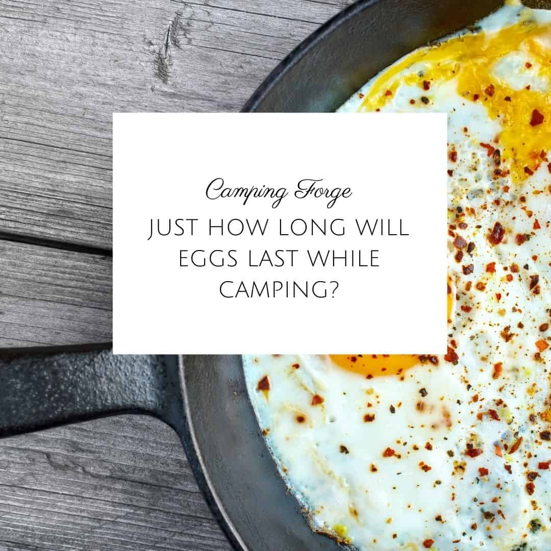 Just How Long Will Eggs Last While Camping?