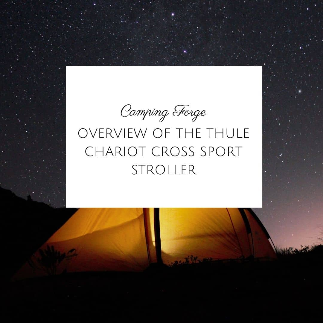 Overview Of The Thule Chariot Cross Sport Stroller