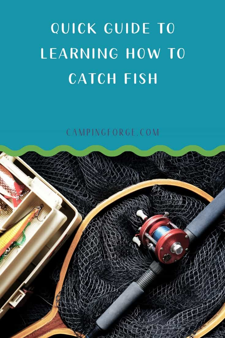 Pinterest image for Quick Guide To Learning How To Catch Fish