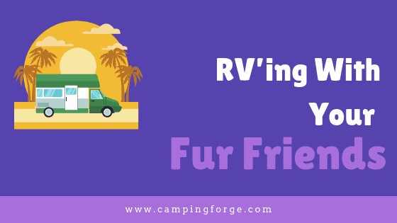 RV'ing With Your Fur Friends