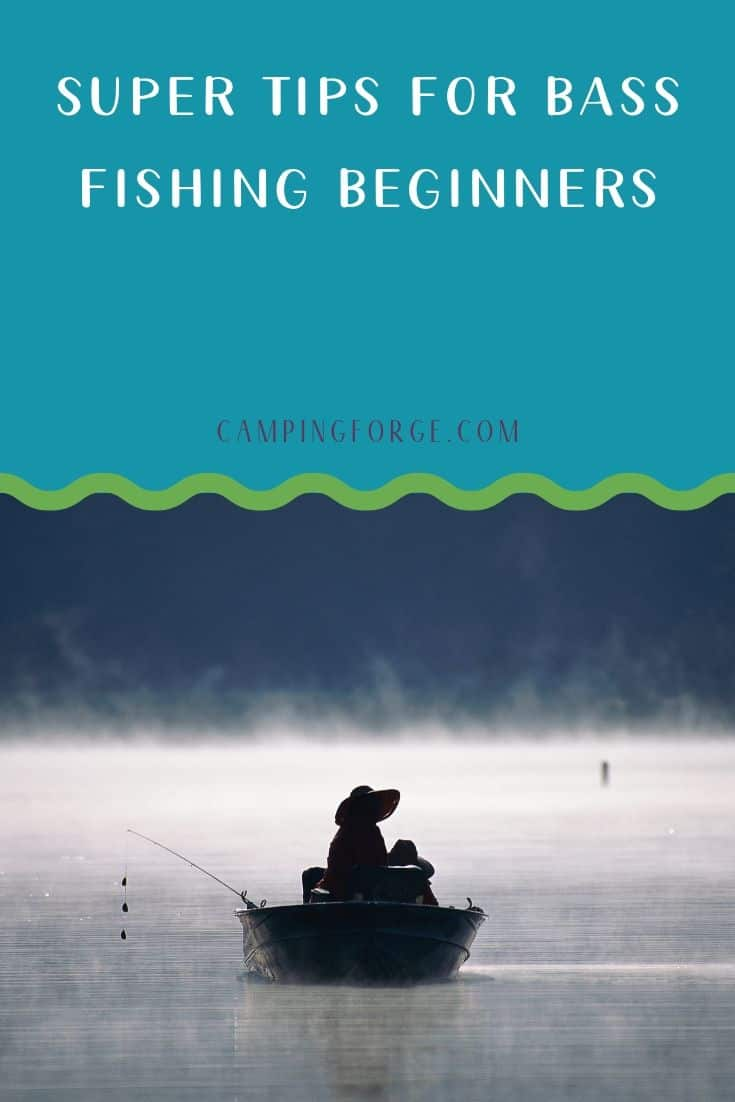 Pinterest image for Super Tips For Bass Fishing Beginners