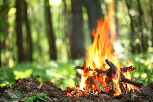 What You Should Pack and Cook On Your Weekend Camping Trip - Bonfire In A Forest